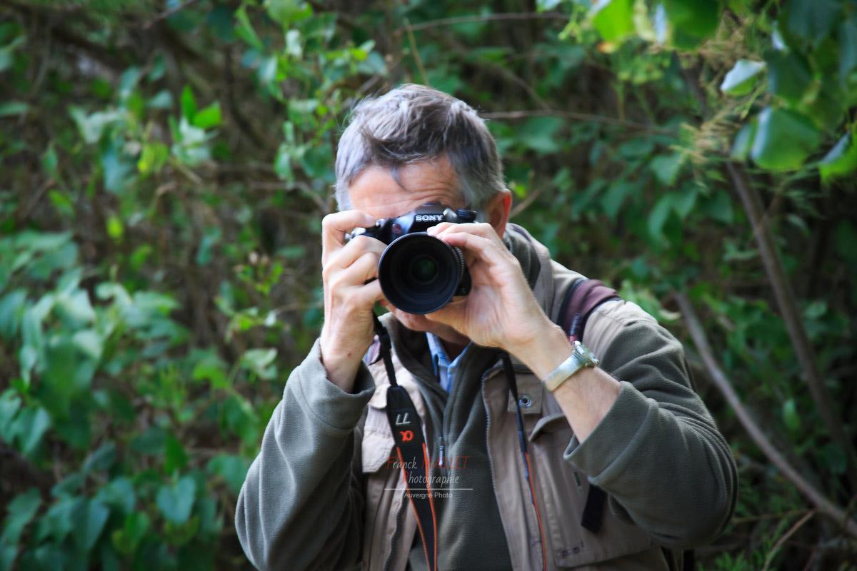 wildlife - Le bernard d'usson